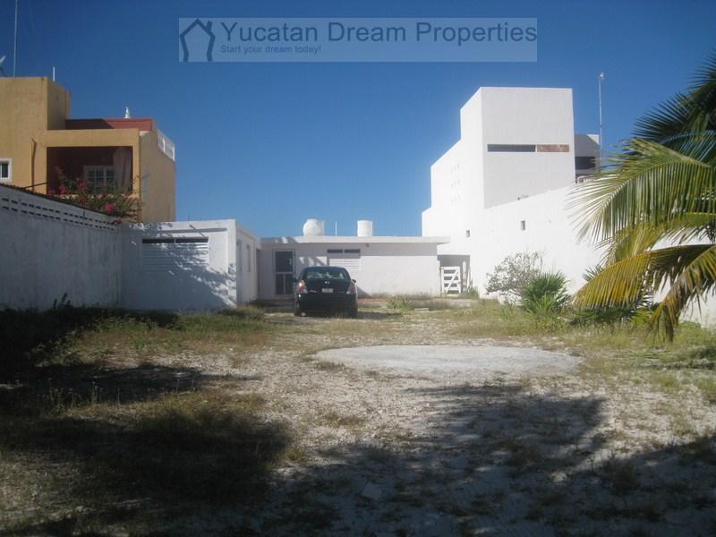 Oceanfront beach bungalow Chuburna