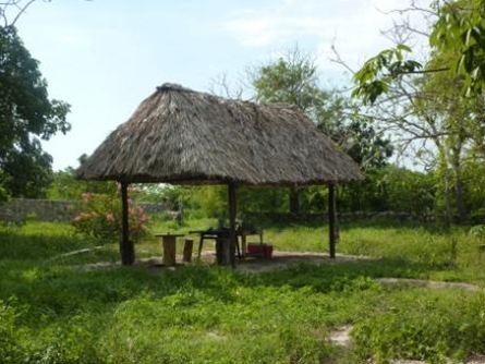 cenote-palapa